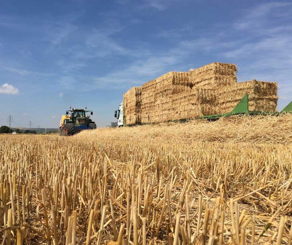 Bremer Agrar Lohnunternehmen beim Pressen von Stroh