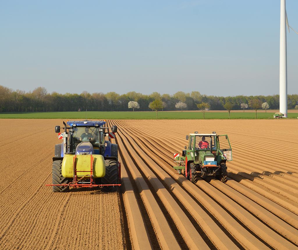 Bremer Agrar Lohnunternehmen – Möhren und Kartoffeln